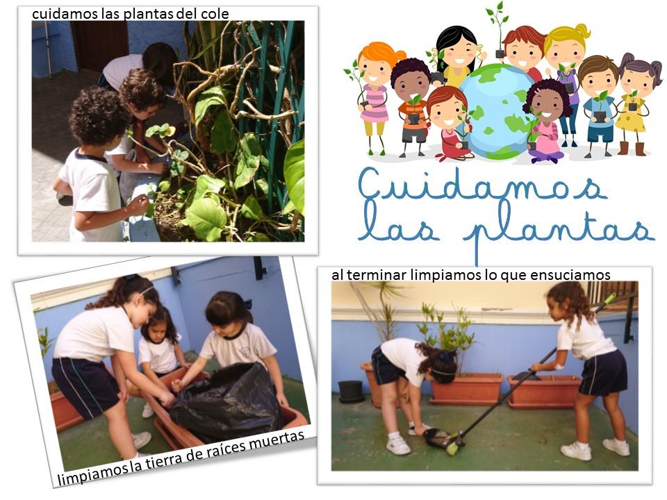 CUIDAMOS LAS PLANTAS (2)